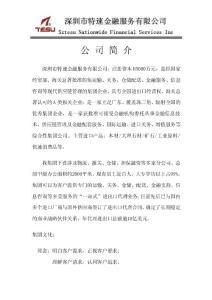 深圳市特速金融服务有限公司