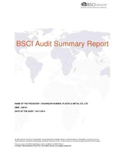 BSCI Audit Summary Report(PDF-13)