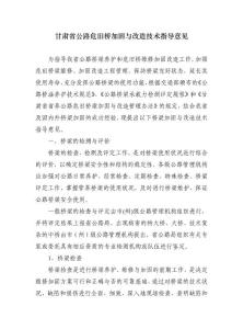 甘肃省公路危旧桥加固与改造技术指导意见