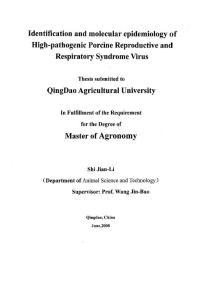 高致病性猪繁殖与呼吸综合征病毒分离鉴定及其分子流行病学分析
