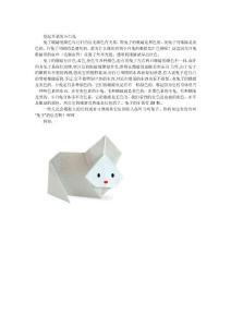 [经典]折纸大全1
