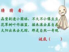 苏教版小学语文三年级上册精品课件《小露珠》 .ppt