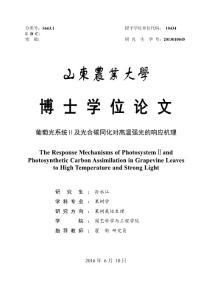 葡萄光系统ⅱ及光合碳同化..