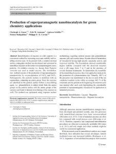Production of superparamagnetic nanobiocatalysts for green chemistry applications.生产超顺磁的nanobiocatalysts对绿色化学的应用