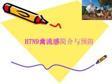 h7n9禽流感预防20130415 ppt课件