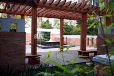 花园景观3