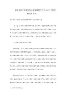 湖北宜昌市夷陵区乐天溪镇村财代理中心运行情况分析