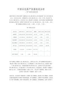 中国石化资产负债状况分析