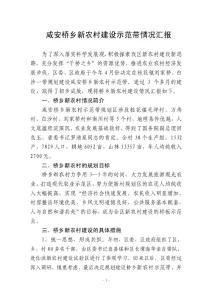 咸安桥乡新农村建设示范带情况汇报