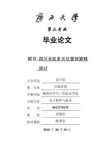 四川长虹多元化营销策略