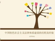 中国特色社会主义法制建设..