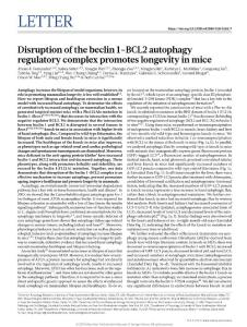 nature.2018-Disruption of the beclin 1-BCL2 autophagy regulatory complex promotes longevity in mice