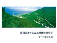 海南国际养生岛战略计划及项目可行性研究分析PPT课件