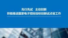 积极推进国家电子招标投标创新试点省工作
