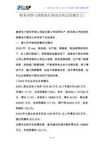 【工作总结】财务预算与预算执行情况分析总结报告[1].docx