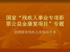 """国家""""残疾人事业专项彩票公益金康复项目""""专题ppt课件"""