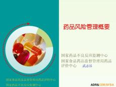 [生物医药论文精品A]药品风险管理概要