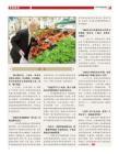 张吉龙的新任务《共鸣》2011年07月号