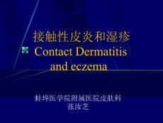 接触性皮炎Contact Dermatitis(PPT-63)