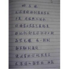 【原创】钢笔圆珠笔行书鉴赏5