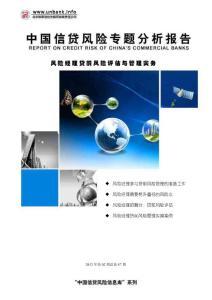 中国信贷风险专题分析报告2012年第02期—风险经理贷前风险评估与管理实务办公文档 合同 总结 计划 报告 研究 心得 汇报