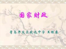 国家财政_中学教育-中学课件
