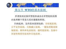 WTO规则--新版(567)