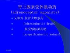 肾上腺素的药理作用,临床应用