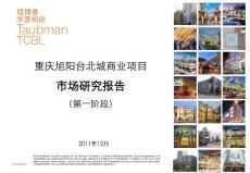 2011年重庆旭阳台北城商业项目市场研究报告(108页)
