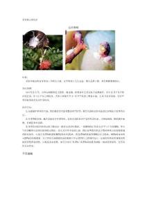 果树虫害手册