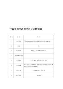 行政处罚类政府信息公开明细表