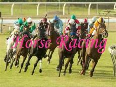 Horse_Racing 英国马术介绍