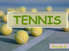 网球名将介绍 TENNIS