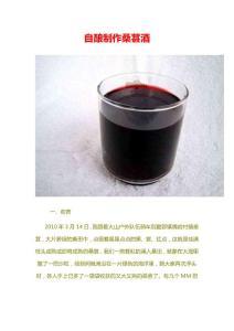 桑葚酒 自酿制作 泡酒 发酵酒工艺