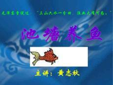 池塘养鱼 (NXPowerLite)