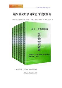 纳米氧化锌项目可行性研究报告-范兆文-18810044308(专业经典案例)