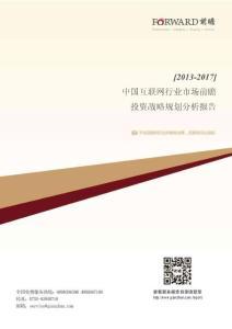 2013-2017年中国互联网行业市场前瞻与投资战略规划分析报告