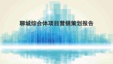 聊城综合体项目营销策划报告104p