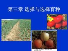 [新版]南京农业大学园艺育种学泛论----第三章 选择与选择育种