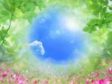 清爽绿叶、水、空气PPT背景图片
