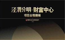 2014西安香江泾渭分明财富中心商业项目全程提案