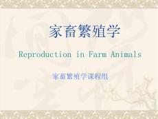 【畜牧课件】02 生殖激素