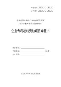 专利战略资助申报书 - 中关..