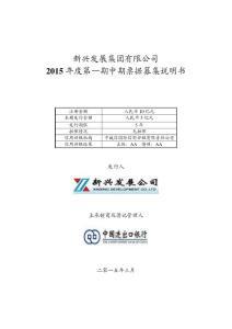 新兴发展集团有限公司2015年度第一期中期票据募集说明书