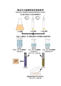 大肠菌群国家检测标准及注意事项