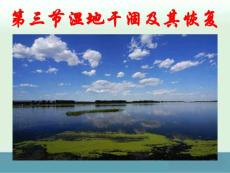 《湿地干涸及其恢复》课件1(20张ppt)(人教版选修6)