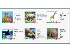 英文单词图文-常见动物英文名称