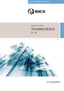 2015国际BIM实施指南(中文版 英国RICS出版)