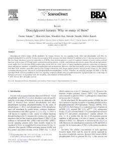 Diacylglycerol kinases W..