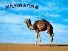 阿拉伯语言学习文集